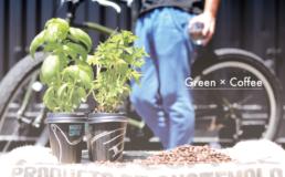 Green×Coffee,コーヒーかす,緑,植物