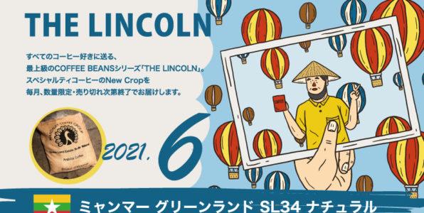 数量限定[ THE LINCOLN ]6月のNewCropミャンマー グリーンランド SL34 ナチュラル
