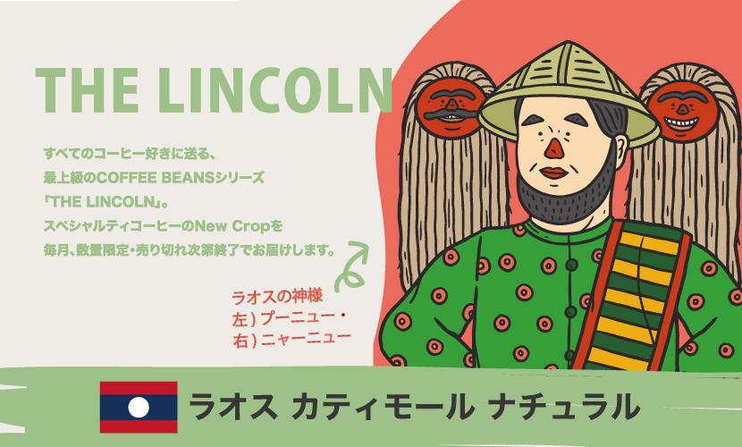 数量限定[ THE LINCOLN ]NewCrop ラオス カティモール ナチュラル150g
